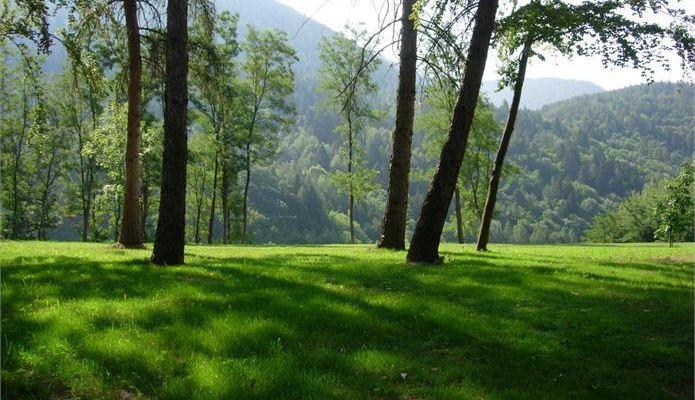 Parco Ai Tre Castagni